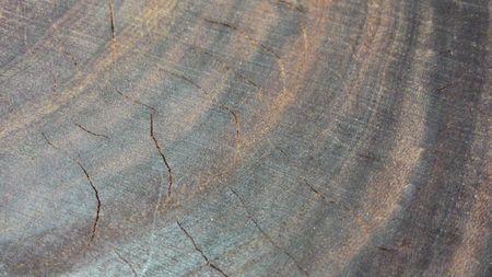 铁木裂痕修复方法